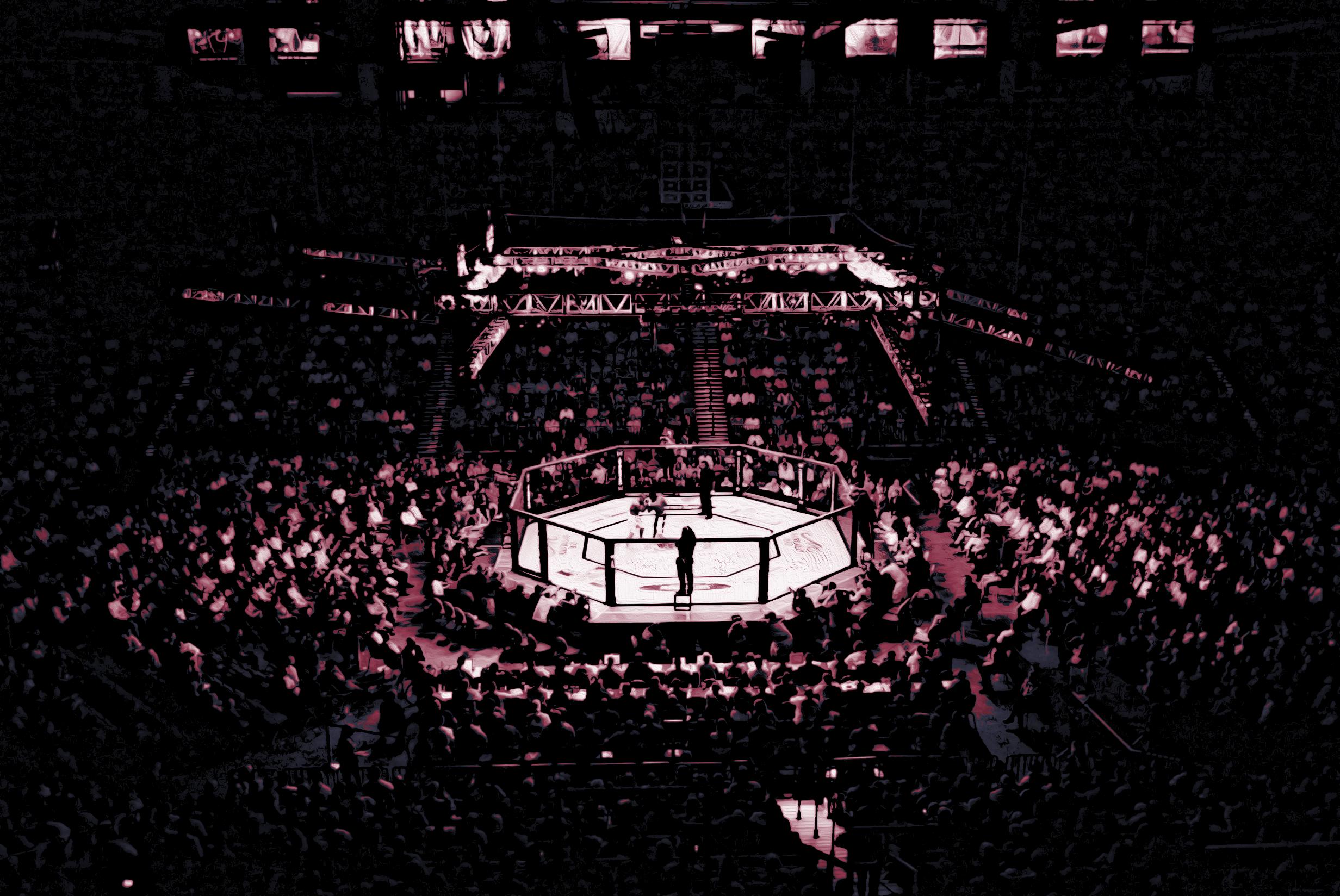 mma_arena